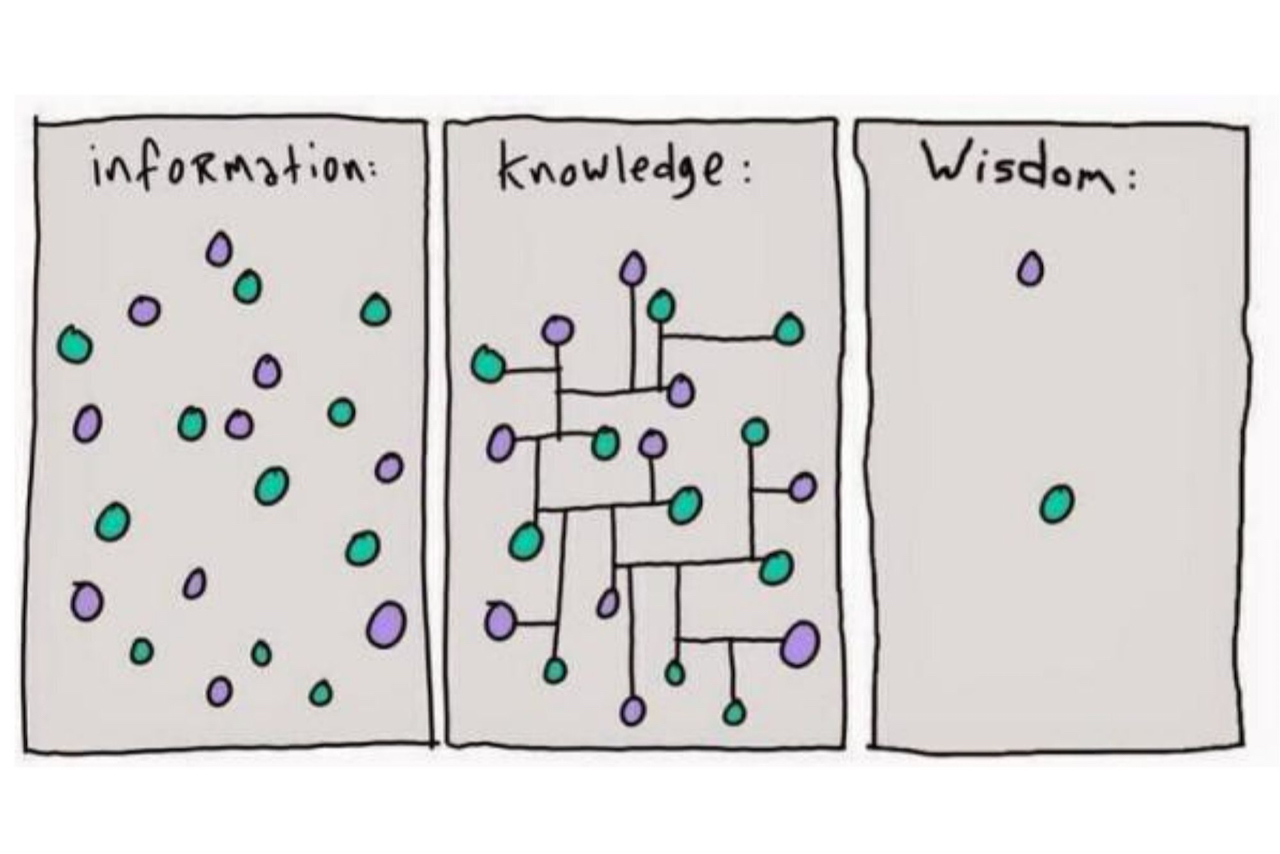 information vs wisdom.jpeg
